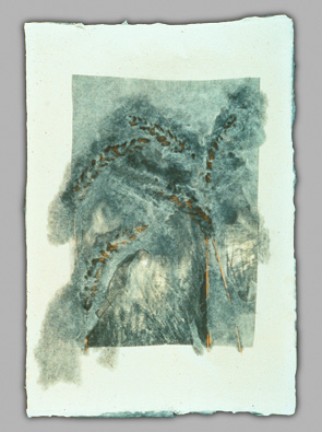 Leaves, Platinum Print and Paper Pulp, 1996